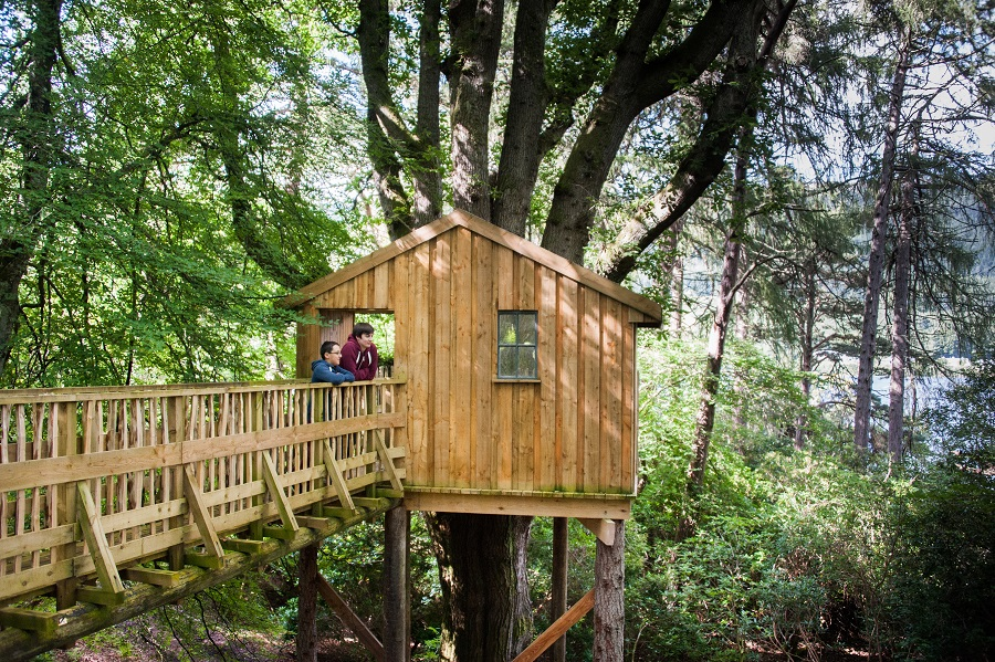 tree house Luxury Family Holiday
