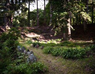 Aldourie Estate Arboretum