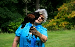 falconry activity days aldourie castle scotland