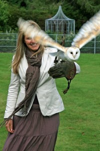 falconry activity days aldourie castle estate