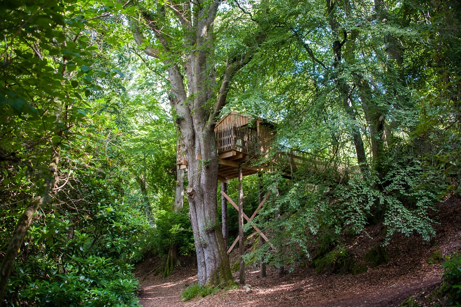 tree house aldourie castle estate scotland