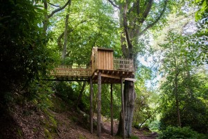 Aldourie Castle treehouse