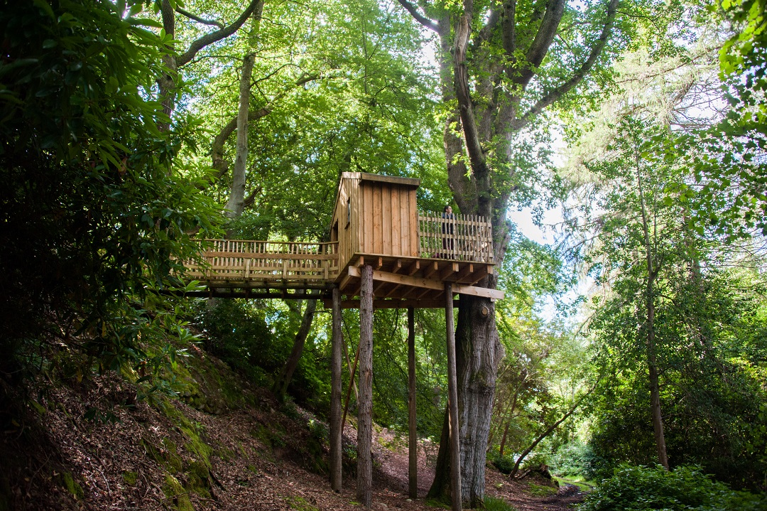 Aldourie Castle Estate loch ness treehouse in woodland stay in a castle