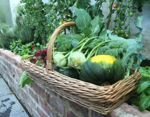 Home Grown Fruit & Veg